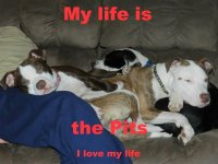 My life is the pits.jpg